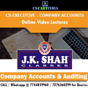CS Executive Company Accounts Auditing Online Video